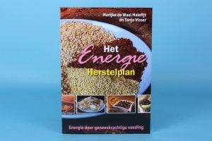 """Boekverslag: """"Het Energie Herstelplan"""""""